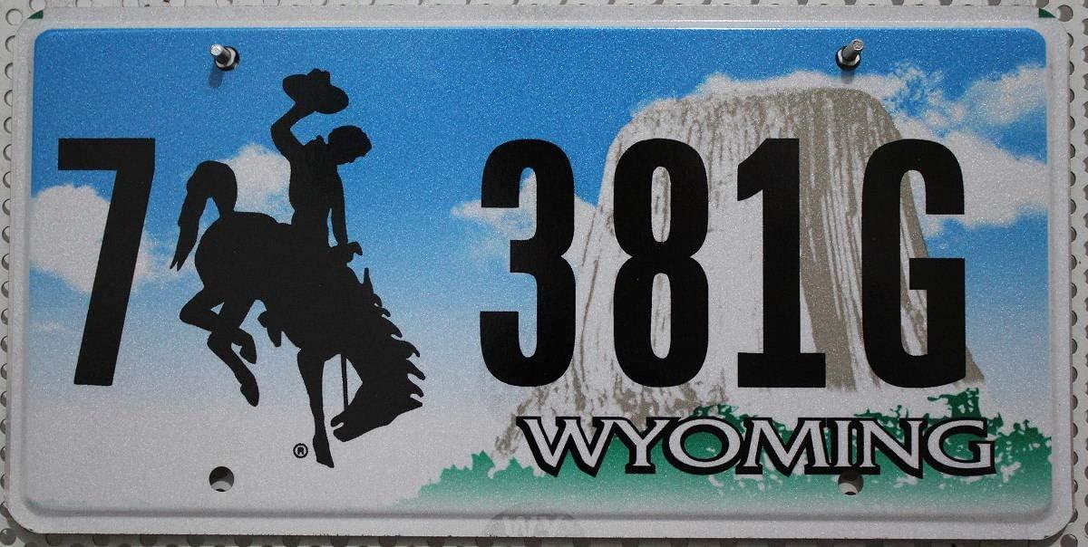 Usa Auswahl Von Fahrzeugschildern 1 Flaches Wyoming Nummernschild Metall Kennzeichen Usa Schild Mit Motiv Cowboy Rodeo Devils Tower Us License Plate Blechschild Auto