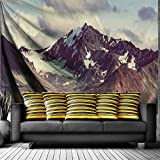 alaska painting - QiyI Home Wall Hanging Nature Art Fabric Tapestry for Dorm Room,Bedroom,Living Room Decorations-60 L x 51
