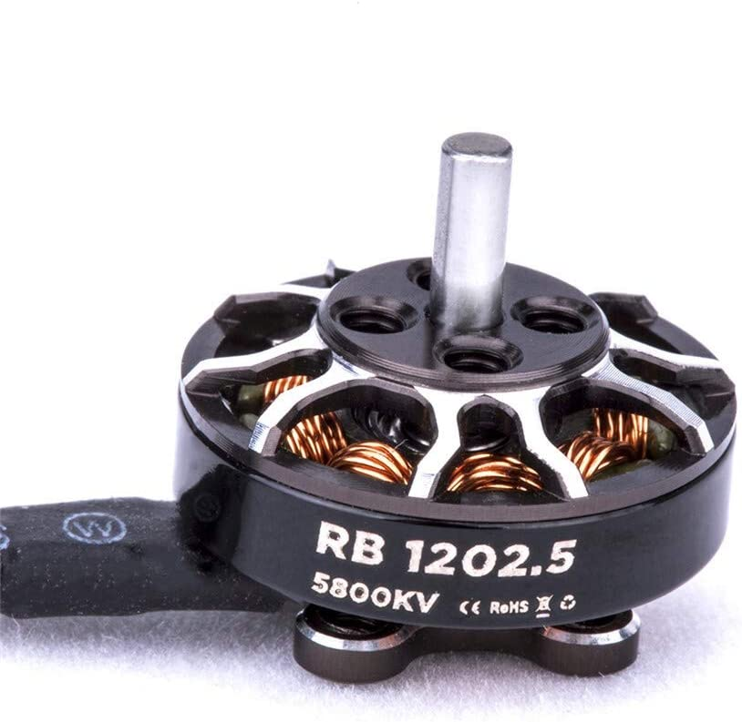 Color : 1PC HUANRUOBAIHUO Motor RB 1202.5 5800KV 2-4S 2mm Shaft Brushless Motor For Toothpick FPV Racing RC Drone Motor spare parts