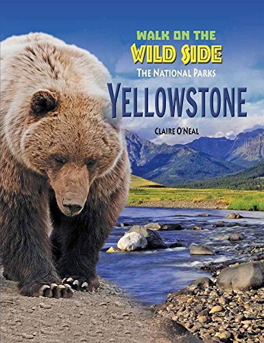 Yellowstone (Walk on the Wild Side: The National Parks)