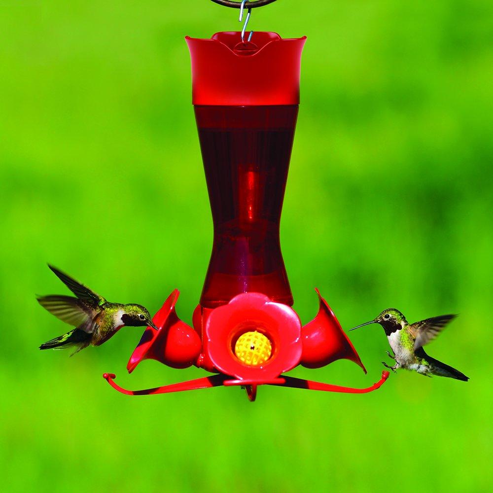 8-Ounce Perky-Pet 403CP Pinch Waist Plastic Hummingbird Feeder