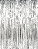 GIFTEXPRESS 2-Pack Silver Foil Fringe Curtain (2, Silver) Party Backdrop/ Party Photo Booth Backdrop/Silver Fringe Backdrop