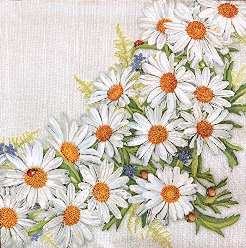 Blossom Camomile - 2 single Paper Napkins for DECOUPAGE Crafts Collection Party Daisies Camomile Nature Spring Flowers Blossom