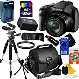 Panasonic Lumix DC-FZ80 18.1MP Digital Camera with 60x Lens, Built-In Wi-Fi & 4K UHD Video (International Version) + Battery & AC/DC Battery Charger + 10pc 32GB Accessory Kit w/HeroFiber Cloth