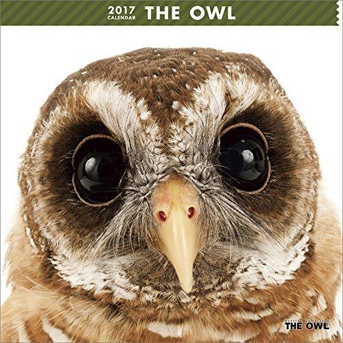 THE OWL Wall Calendar 2017