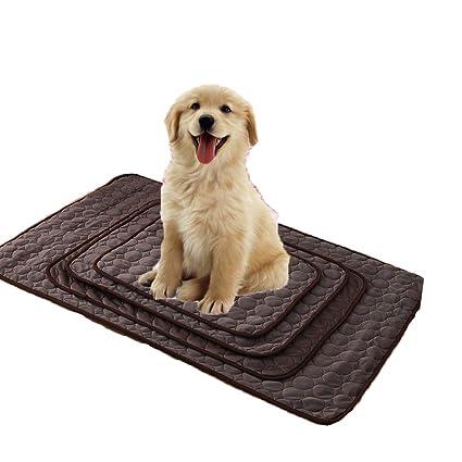 Amazon Com Seven Wolves Dog Cooling Mat Dog Cooling Pad