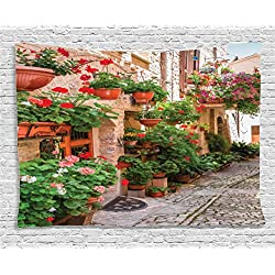 Ambesonne Tuscan Decor Tapestry, Street View of a Small Renaissance Town with Floral Porches and Rock Houses Mediterranean Art, Wall Hanging for Bedroom Living Room Dorm, 60 X 40 inches, Multi