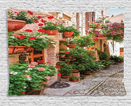 "Ambesonne Italian Tapestry, Street View of a Small Renaissance Town with Floral Porches and Rock Mediterranean, Wide Wall Hanging for Bedroom Living Room Dorm, 60"" X 40"", Pale Brown"