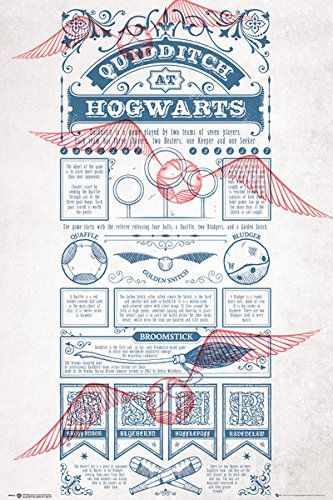 Harry Potter - Movie Poster / Print (Quidditch At Hogwarts - Infographic & Rules) (Size: 24