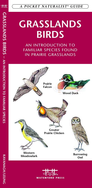 Download Grasslands Birds: A Folding Pocket Guide to Familiar Species found in Prairie Grasslands (A Pocket Naturalist Guide) pdf epub