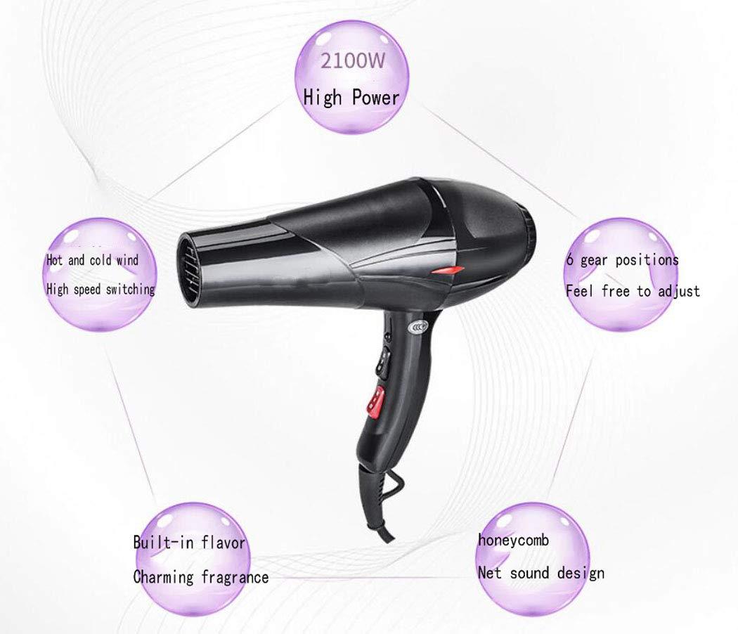 Hhrong Secador de Pelo 2100W Ion secador de Pelo Profesional, secador de Pelo de bajo Consumo de energía para el hogar secador de Temperatura Constante ...