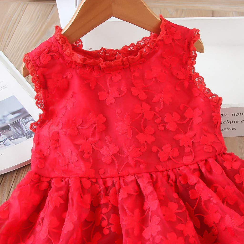 Baby Toddler Girls Lace Princess Dresses Clothes 2-8 Years Old Children Embroidery Tulle Party Wedding Dresses