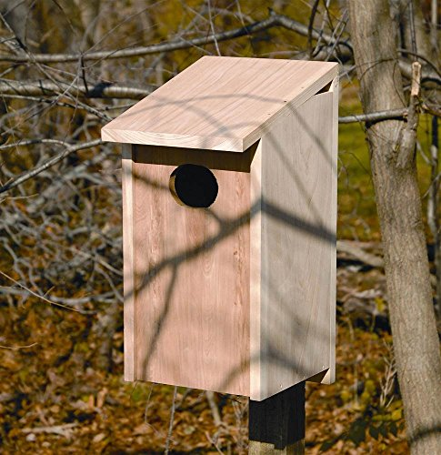 Heartwood Wood Duck Bird House (Wood Duck Nest)