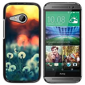 Paccase / SLIM PC / Aliminium Casa Carcasa Funda Case Cover - Sunset Beautiful Nature 52 - HTC ONE MINI 2 / M8 MINI