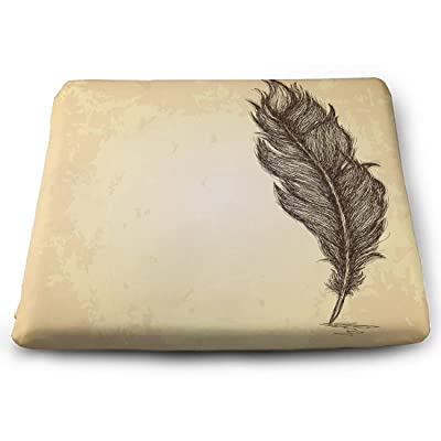 Tinmun Square Cushion, Sketch Feather Grungy Vintage Bird Large Pouf Floor Pillow Cushion for Home Decor Garden Party: Home & Kitchen