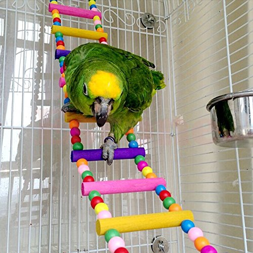 Itemap Pet Bird Swing Wooden Bridge Ladder Climb Parakeets Cockatiels Parakeet Budgie Parrot Toy (5 Steps) (10 steps) by Itemap (Image #2)