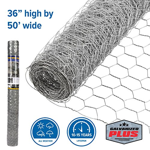 FenceScreen Galvanized Steel 1-in Mesh Chicken Wire Poultry Netting (36-in. x 50-ft.) (1 Chicken Wire)