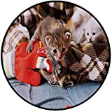 Printing Round Rug,Cats,Kittens and Mittens Newborns Baby Animals in an Plain Blanket Wood Play Toys Adorable Mat Non-Slip Soft Entrance Mat Door Floor Rug Area Rug For Chair Living Room,Multicolor