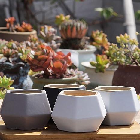 Pot De Fleur Moderne Buro Dekoration Modern Pots De Plantes
