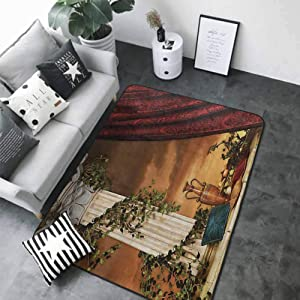Floor Entrance Rug Gothic,Greek Style Scene Climber Pillow Fruits Vine and Red Curtain Ancient Figure Sunset,Multicolor 72 x 48 in Floor mats