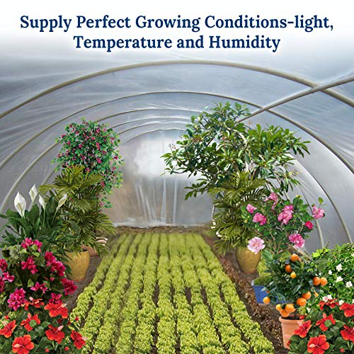BenefitUSA 12ft X 25ft Clear Plastic Greenhouse Cover 6mil Thicker PE Covering by Benefit-USA (Image #3)