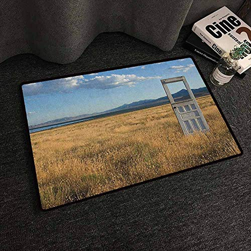 - Large Floor Mats for Living Room Colorful Antique,Old Door Standing Alone in Field with Mountains Summer Sky Surreal, Blue Earth Yellow Coconut,W20 xL30 Camping Rugs for Outside