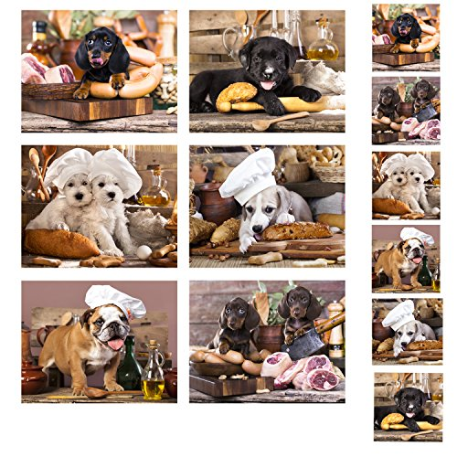 Gwen Street Designs Cork backed Placemats and Coasters Kitchen Dogs Extra Large Dining Table Set 6 New
