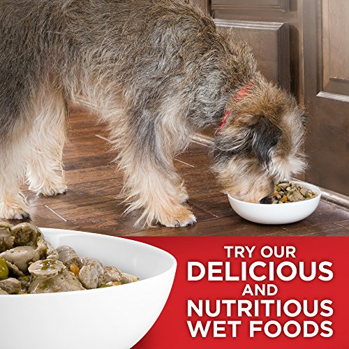 Hill's Science Diet Dry Dog Food, Adult, Grain Free Chicken & Potato Recipe, 21 Lb Bag by Hill's Science Diet (Image #11)
