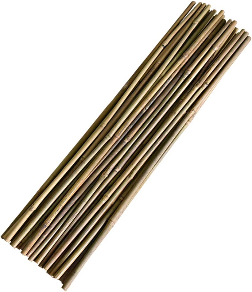 BYBAG Natural Bamboo Stakes,Bamboo Sticks for Plants,Garden Trellis Supports Climbing for Tomatoes, Trees, Beans