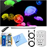 LG 65EF9500 65-Inch 2160p Flat OLED 4K TV Bundle with Microfiber Cloth, 2 HDMI Cables and Surge Protector with USB Ports & Cleaning Kit