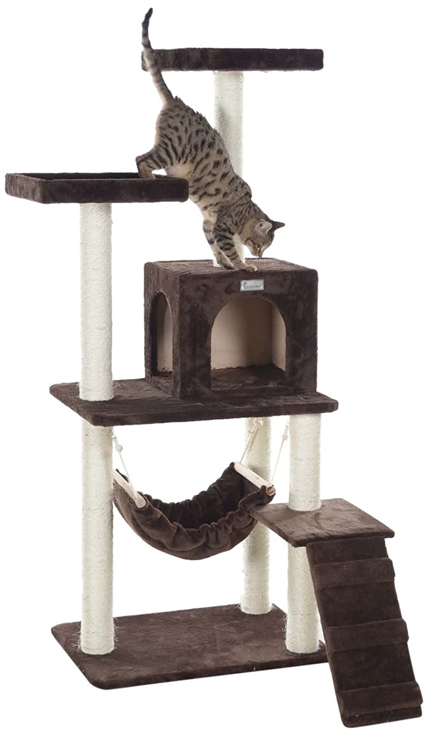 amazon     gleepet gp78570923 cat tree with ramp 57 inch coffee brown   cat tree tower   pet supplies amazon     gleepet gp78570923 cat tree with ramp 57 inch      rh   amazon