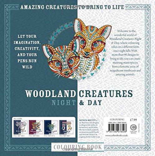 Amazon Woodland Creatures Night Day Colouring Book 9781780978598 Patricia Moffett Books