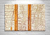 Large Wall Art, Rustic, Home Decor, Abstract Photography, Canvas Print,