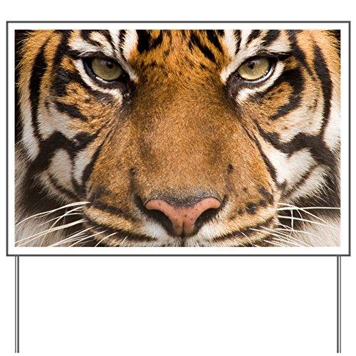Yard Sign Sumatran Tiger Face