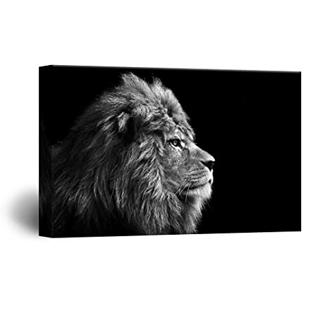 Wall26 Canvas Wall Art   A Lion On Balck Background   Giclee Print Gallery Wrap Modern Home Decor Ready To Hang   16x24 Inches by Wall26