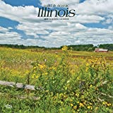 Illinois, Wild & Scenic 2019 12 x 12 Inch Monthly Square Wall Calendar, USA United States of America Midwest State Nature (Multilingual Edition)