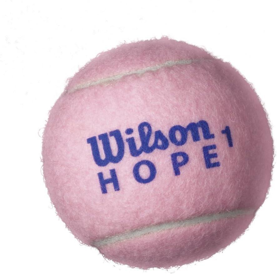 Wilson Sporting Goods Hope All Court Extra Duty Tennis Balls