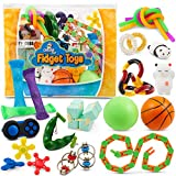 Sensory Fidget Toys 23-Pack – Stress Relief Toys