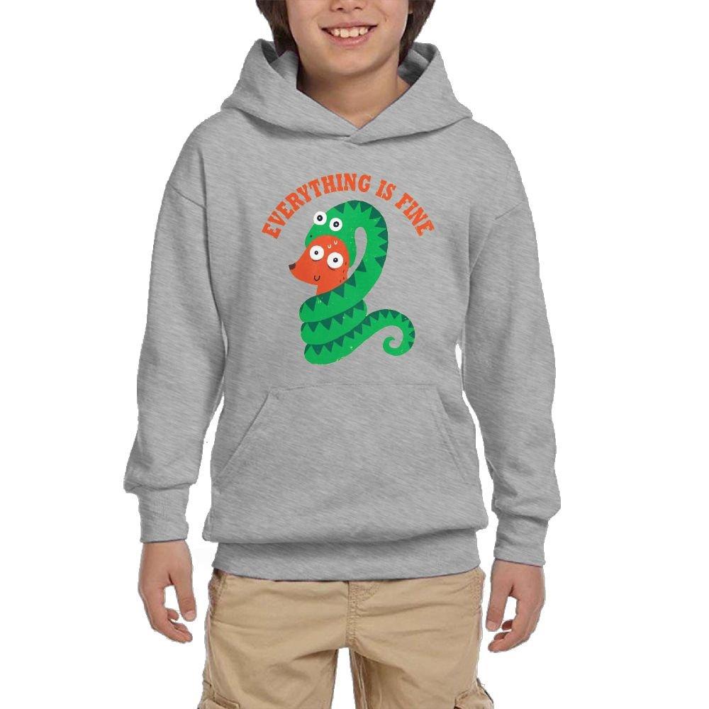 Mkajkkok Everything Is Fine Teen Hoodies With Kangaroo Pocket Custom Graphic Sweatshirt For Fall/Winter For Boys