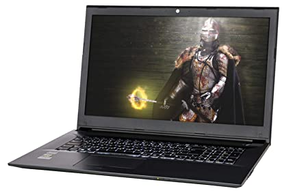 NEXOC Gaming - Ordenador portátil (17,3 Pulgadas, Full HD, i5-