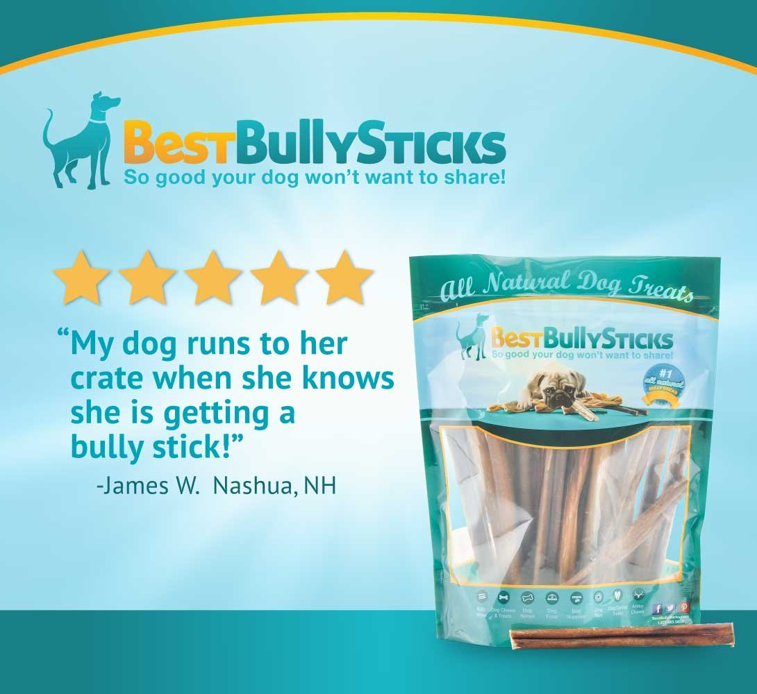 100% Natural 6-inch Thin Bully Sticks by Best Bully Sticks (100 Pack) by Best Bully Sticks