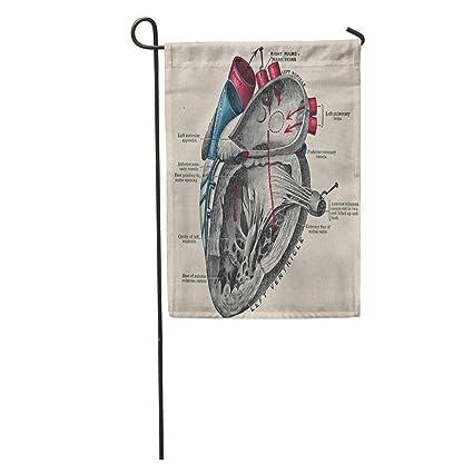 Amazon.com: Ablitt - Banderas para jardín, diseño vintage de ...