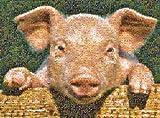 Buffalo Games Photomosaic, Pig - 1000pc Jigsaw Puzzle