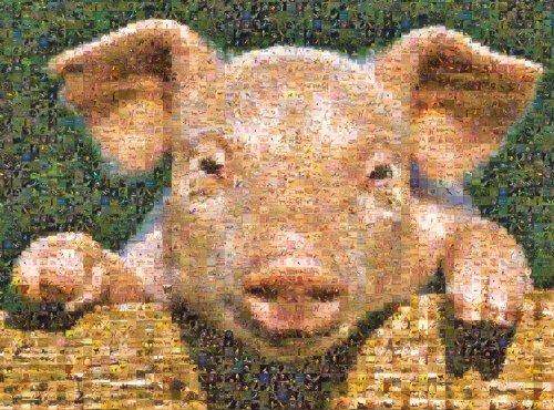 Buffalo Games Photomosaic, Pig - 1000pc Jigsaw - 1000pc Puzzle Photomosaic