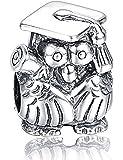 Diseño de búho graduación cuenta de plata con gorra sombrero y Scroll - auténtica 925 de plata de ley - caja de regalo