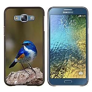 Azul Songbird Blue Spring Green Nature- Metal de aluminio y de plástico duro Caja del teléfono - Negro - Samsung Galaxy E7 / SM-E700