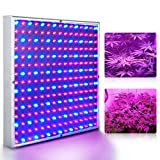 Cheap Superdream LED Grow Light for Indoor Garden Greenhouse and Hydroponic Full Spectrum Growing Lamps 15W Red Blue Hanging Light