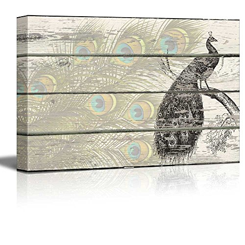 Lithographic Peacock with Feathers Artwork Rustic