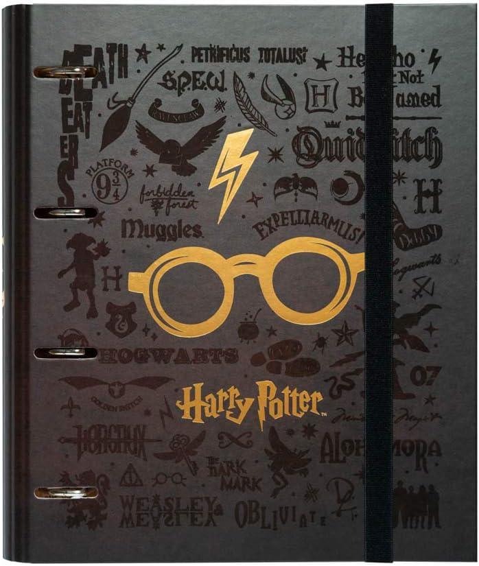 ERIK - Carpeta 4 anillas troquelada premium Gafas, Harry Potter, A4 (26x32cm)