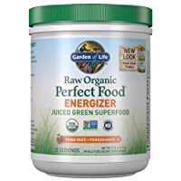 Garden of Life Raw Organic Perfect Food Energizer Juiced Green Superfood Powder...